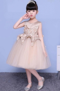 China Cute Boutique princess children clothes flower girl summer party dress factory